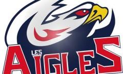 logo Nice Hockey Côte D'Azur