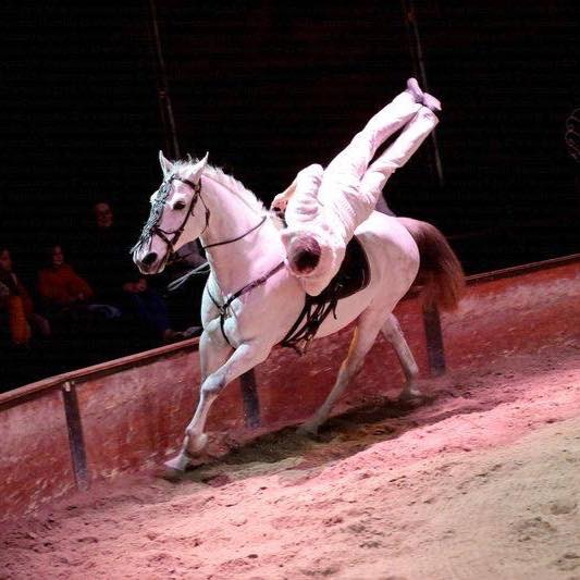 voltige equestre Charles LAMARCHE spectacle volia nice