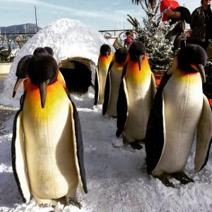 Regalà Mercat marché de Noël polaire saint jean cap ferrat nice