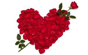photo roses saint valentin coeur image amour love