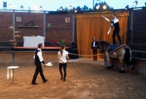 spectacle equestre volia nice