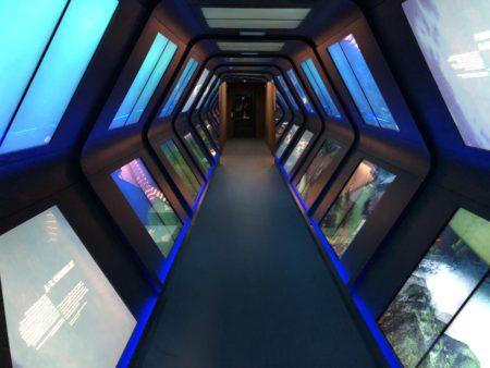 commandant cousteau musée océanographique monaco
