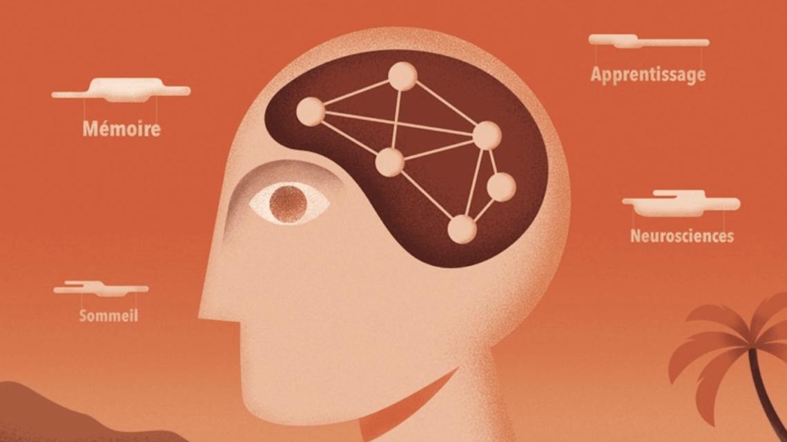 Neuroplanete à Nice : les extraordinaires pouvoirs du cerveau